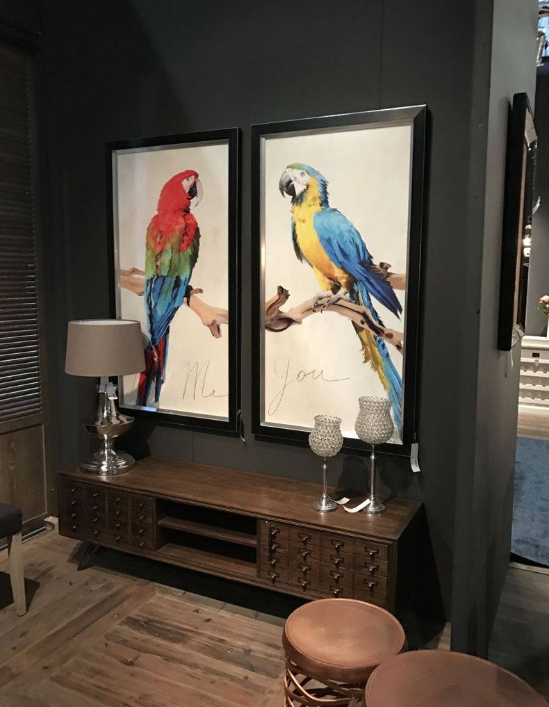 Colorful Parrot Framed To Blow The Living Room Decor