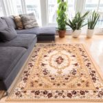 How to Make Paris Themed Area Rugs Decor in Your House